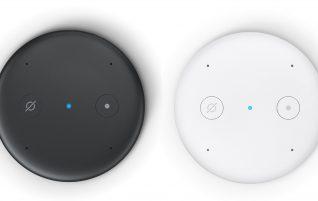 Amazon Echo Input: Alexa at minimum terms
